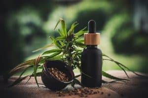 צמח ובקבוקון