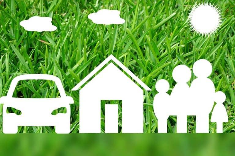 אילוסטרציה של סוגי ביטוח על רקע של דשא
